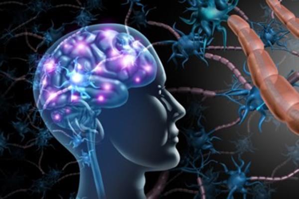 Neurozorg Multiple Sclerose